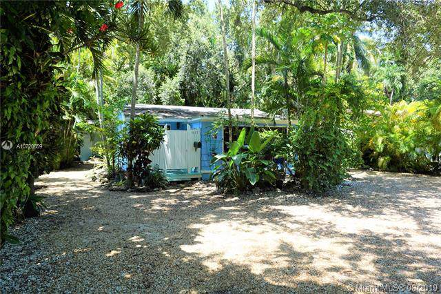 3641 Loquat Ave, Miami, FL 33133 (MLS #A10720859) :: Grove Properties