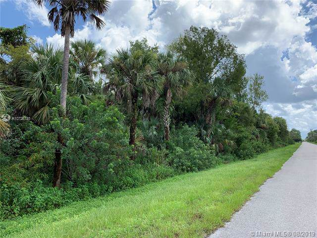 3445 28 Ave, Other City - In The State Of Florida, FL 34117 (MLS #A10726745) :: The Paiz Group