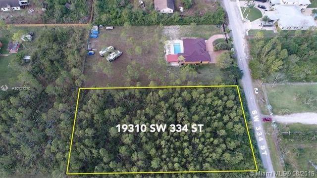 19310 SW 334, Homestead, FL 33034 (MLS #A10727270) :: The Paiz Group