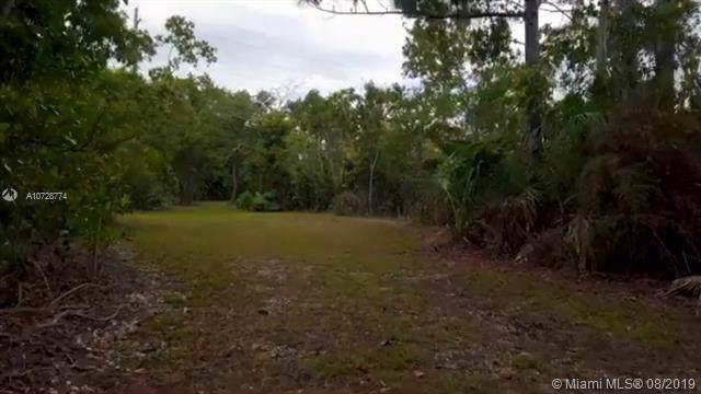 00000 SW 125 AV, Miami, FL 33032 (MLS #A10728774) :: The Riley Smith Group