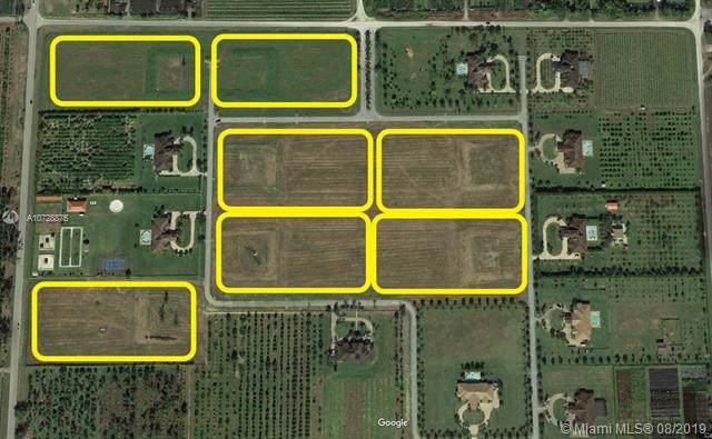 31455 SW 215 AVE, Homestead, FL 33033 (MLS #A10728876) :: The Paiz Group