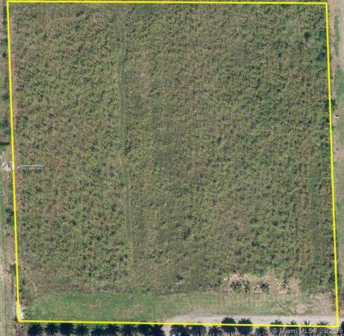 0081, Kendall, FL 33196 (MLS #A10738725) :: The Erice Group