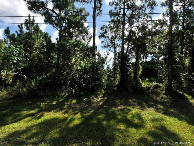 3191 SW Rosser Blvd, Port Saint Lucie, FL 34953 (MLS #A10739996) :: Ray De Leon with One Sotheby's International Realty