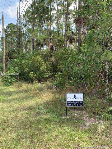 16th AVE NE NAPLES F Golden Gate Est Unit 75 North Half Of Tract 103, Other City - In The State Of Florida, FL 34120 (MLS #A10744097) :: The Riley Smith Group