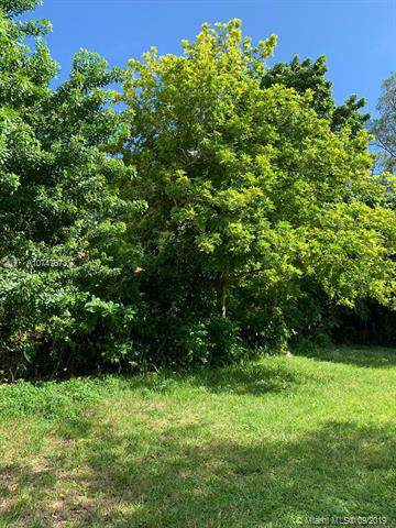 3642 William, Miami, FL 33133 (MLS #A10747673) :: Grove Properties
