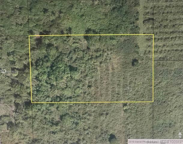000 000, Florida City, FL 33034 (MLS #A10752219) :: Grove Properties
