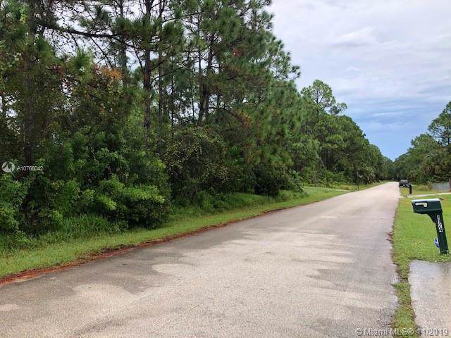 1123 SE Sapphire, Palm Bay, FL 32909 (MLS #A10766042) :: Grove Properties