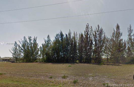 1806 NW 21st Ave, Other City - In The State Of Florida, FL 33993 (MLS #A10769751) :: Grove Properties