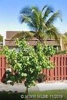 19115 W Lake Dr, Hialeah, FL 33015 (MLS #A10772420) :: ONE | Sotheby's International Realty