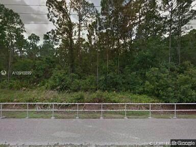2520 Azure St, Sebring, FL 33875 (MLS #A10910899) :: Compass FL LLC