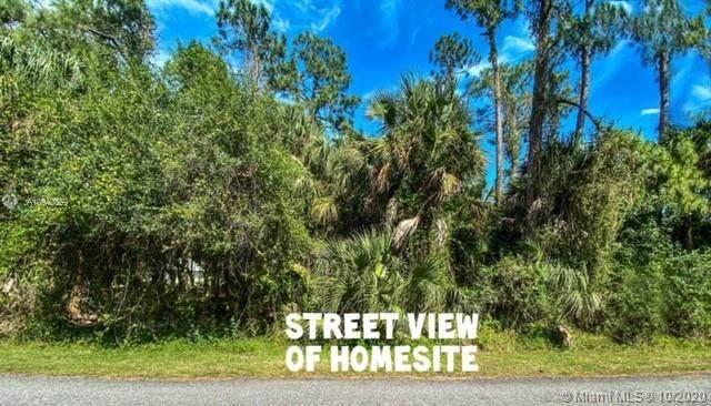 0 Park Dr., La Belle, FL 33935 (MLS #A10940559) :: Castelli Real Estate Services