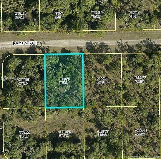 1238 E Ramus, Lehigh Acres, FL 33974 (MLS #A10959454) :: Castelli Real Estate Services