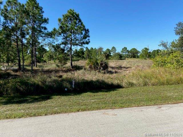917 Oxford Ave S, Lehigh Acres, FL 33974 (MLS #A10960695) :: Castelli Real Estate Services