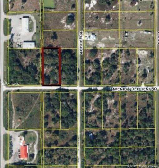 115 N Avenida Del Centro, Clewiston, FL 33440 (MLS #A11023532) :: The Howland Group