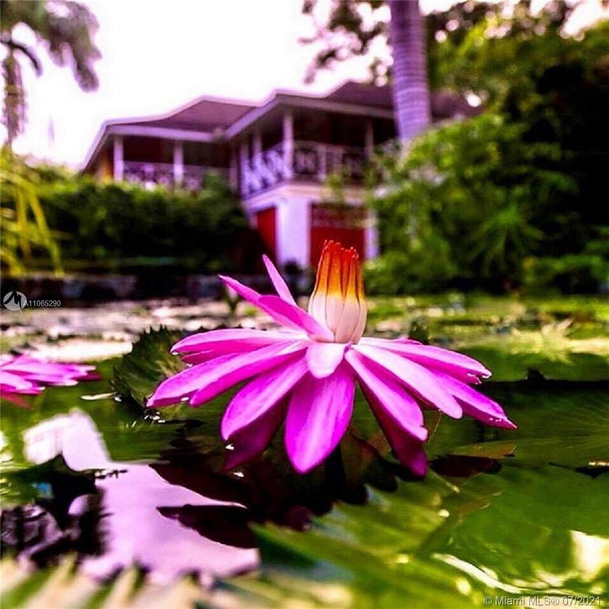 11 St Ann's Bay, Jamaica - Photo 1