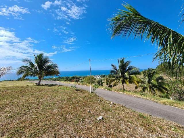 4 Whitehouse, Westmoreland Jamaica - Photo 1