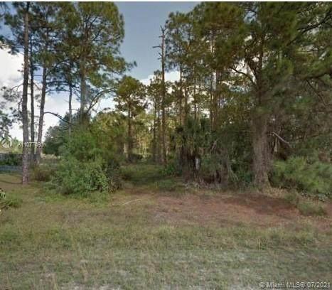 106 Irving  Ave, Lehigh Acres, FL 33936 (#A11077893) :: Dalton Wade