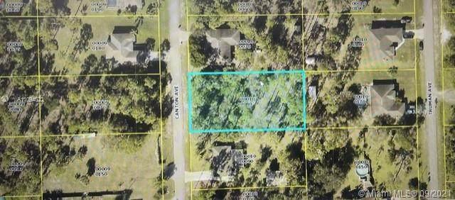 408 Canton Ave, Lehigh Acres, FL 33972 (#A11094623) :: Dalton Wade