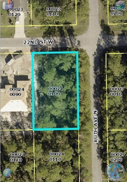 3301 W 22nd St, Lehigh Acres, FL 33971 (MLS #A11103160) :: Onepath Realty - The Luis Andrew Group