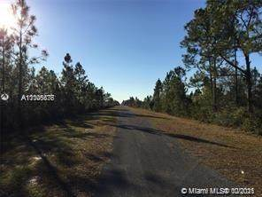 O N Leander Dr, Other City - In The State Of Florida, FL 33898 (MLS #A11106676) :: Castelli Real Estate Services