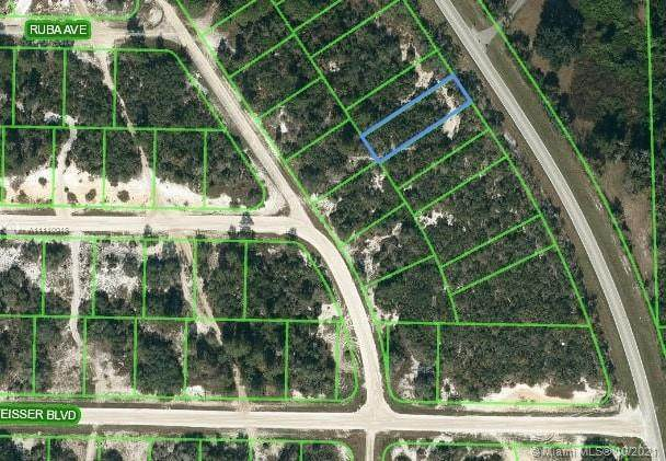 1057 Cr 29, Lake Placid, FL 33852 (MLS #A11110018) :: THE BANNON GROUP at RE/MAX CONSULTANTS REALTY I