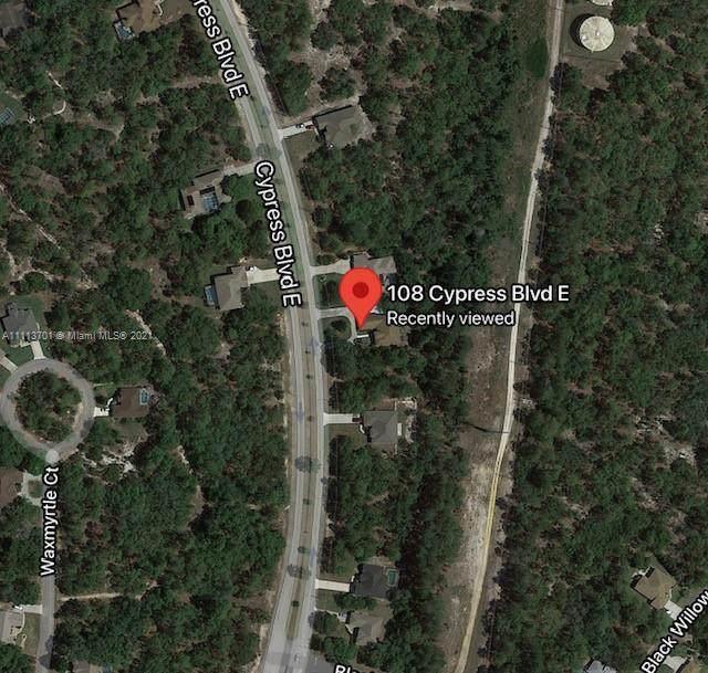 108 Cypress Blvd E, Homosassa Springs, FL 34446 (MLS #A11113701) :: GK Realty Group LLC