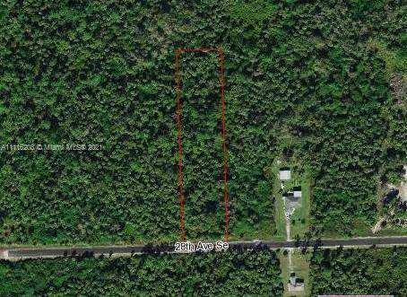 28 SE Ave, Naples, FL 33177 (MLS #A11116208) :: Castelli Real Estate Services