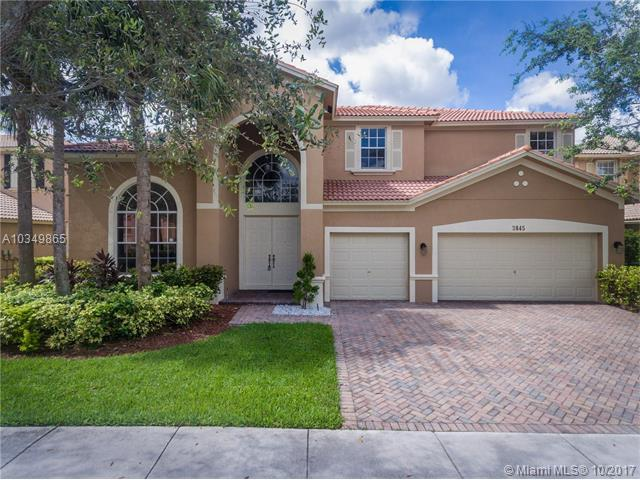 3845 W Hibiscus St, Weston, FL 33332 (MLS #A10349865) :: The Chenore Real Estate Group