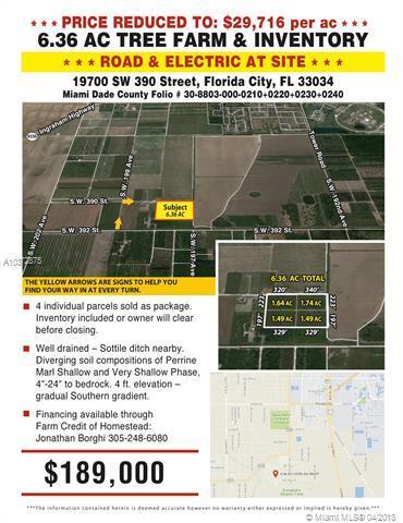19700 SW 390 STREET, Florida City, FL 33034 (MLS #A10372875) :: Green Realty Properties