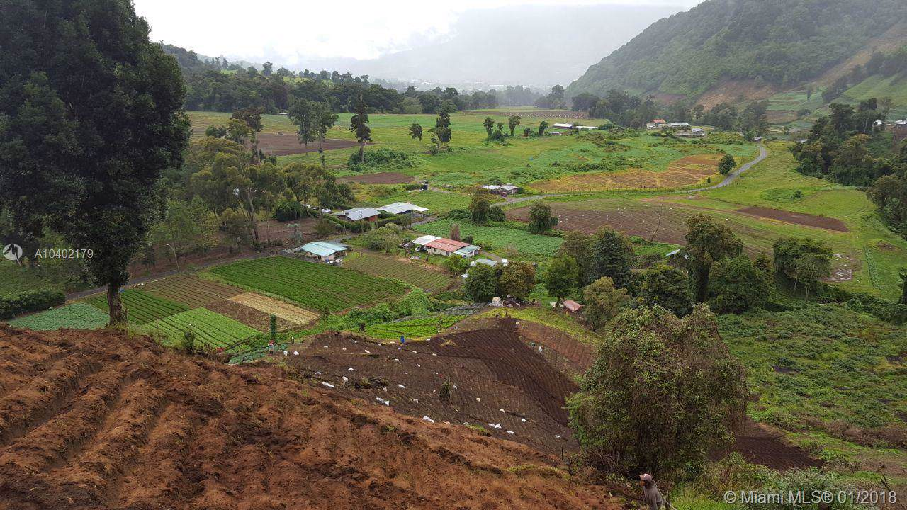 Bajo Grande, Panama, C.A. - Photo 1