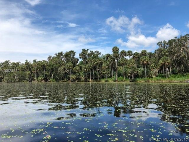 302 Drayton Island Rd, Other City - In The State Of Florida, FL 32139 (MLS #A10525249) :: Stanley Rosen Group