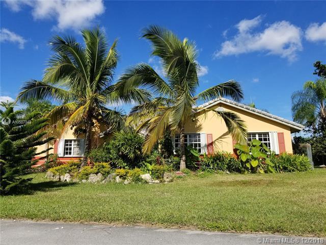 15241 SW 150 Street, Miami, FL 33196 (MLS #A10587348) :: Green Realty Properties