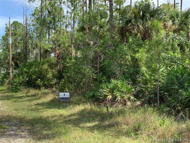Golden Gate Est Unit 75 North Half Of Tract 103, Other City - In The State Of Florida, FL 34120 (MLS #A10710804) :: Grove Properties