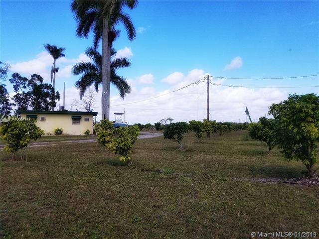 21025 SW 300th St, Homestead, FL 33030 (MLS #A10584141) :: Green Realty Properties
