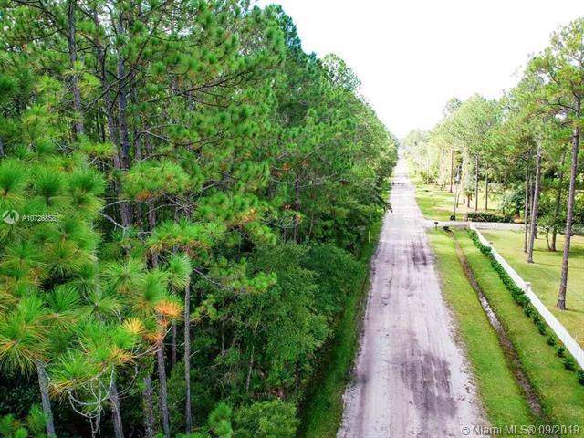 0 Ch Arnold-Lot 14E, Other City - In The State Of Florida, FL 32092 (MLS #A10726858) :: Grove Properties