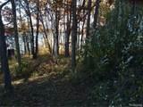 Lot 69 Skinner Lake Road - Photo 2