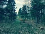 Goshawk Way - Photo 3