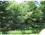 0 Wald Strasse - Photo 1