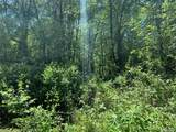 Lot 3 Oak Trail - Photo 18