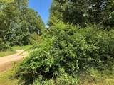 17825 Sharon Hollow Lane - Photo 6