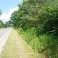 6465 Oakville Waltz Road - Photo 17