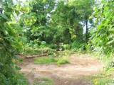 000 Birchtree - Photo 5