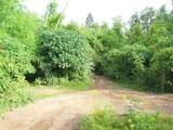000 Birchtree - Photo 6