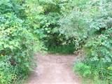000 Birchtree - Photo 9