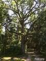VL Pine Meadow Drive - Photo 1