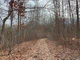 60 acres Lakeshore Drive - Photo 12