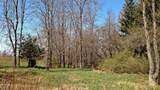 2.56 Acres Tuttle Road - Photo 5