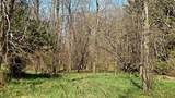 2.56 Acres Tuttle Road - Photo 8