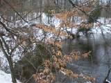 Woods Road - Photo 12