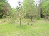 Lot 23 Ridge Road - Photo 11